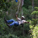 Attractions Tsitsikamma, Treetop canopy tours Tsitsikamma, things to do near Lilypond Lodge